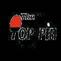TopSpin logo